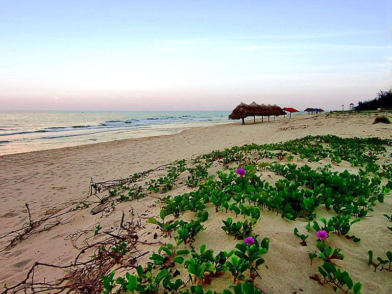 Vẻ đẹp hoang dã của bãi biển Nhật Lệ